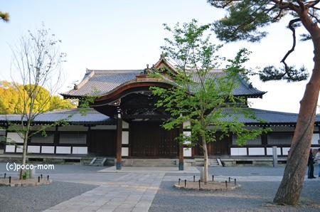 京都武徳殿2013年04月28日_DSC_0160