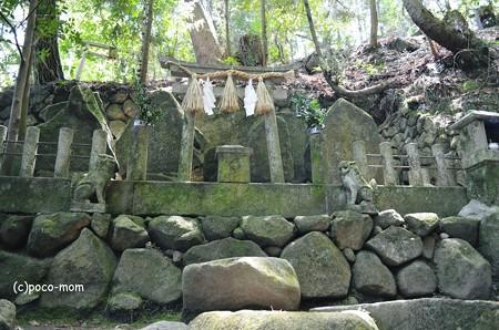 生駒山岩谷の滝2013年04月29日_DSC_0375