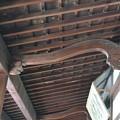 写真: 南禅寺金地院方丈2013年08月15日_DSC_0169