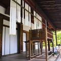 写真: 南禅寺天授庵2013年08月15日_DSC_0132