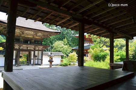 円成寺2013年08月16日_DSC_0300