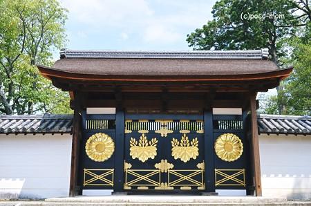 醍醐寺三宝院2013年08月17日_DSC_0382