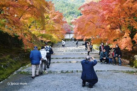 嵯峨嵐山 二尊院2013年11月24日_DSC_0071