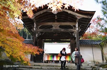 嵯峨嵐山 二尊院2013年11月24日_DSC_0075