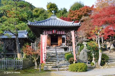 嵯峨嵐山 二尊院2013年11月24日_DSC_0090