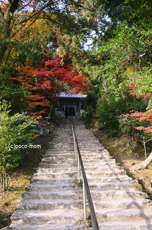 嵯峨嵐山 二尊院2013年11月24日_DSC_0096