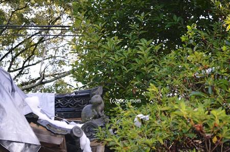滋賀 三尾神社2014年02月09日_DSC_0028