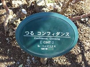 19ikuta24120215