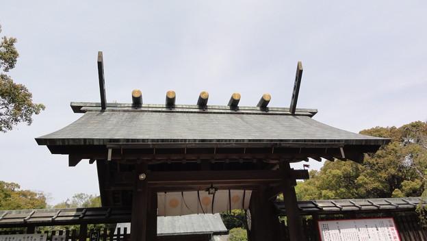 新年度の宮崎神宮3