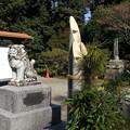 地元、大塚神社へ初詣2