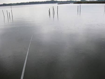 霞ヶ浦の釣り