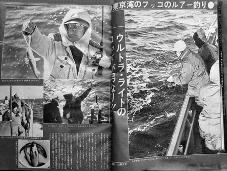 東京湾のフッコのルアー釣り