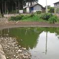 Photos: U池減水