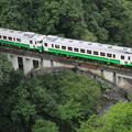 大谷川橋梁を渡るキハ40系