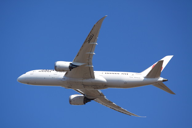 Japan Airlines 787-846