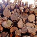 Photos: Firewoods