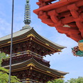 板橋不動尊 楼門と三重塔