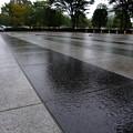Photos: Rainy Rotary