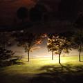 写真: 深夜の公園