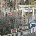 Photos: 亀有香取神社鳥居 (葛飾区亀有)