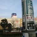 Photos: Ario (葛飾区亀有)