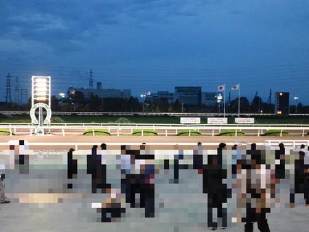 園田競馬場のゴール付近