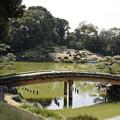 清澄庭園にて1