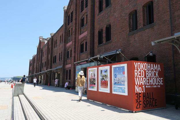 ねこ写真と赤レンガ倉庫