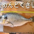 Photos: 62717_sushi