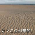 Photos: 2762_beach