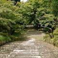 京都山科の毘沙門堂の階段