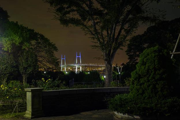 Photos: 夜の横浜ベイブリッジ