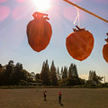 古河市立仁連小学校の干し柿