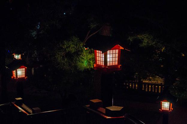 写真: 夜の穴八幡宮@東京早稲田