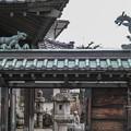 Photos: 対峙する虎と龍