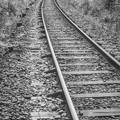 線路は続くよ、、