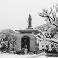 Snowy Kannon@2013/01/14,Tokyo