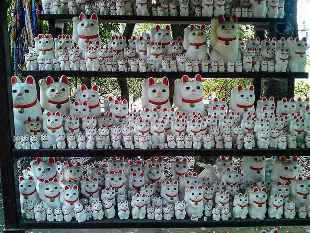 招き猫発祥の地、東京世田谷にある豪徳寺にて
