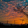 沖縄の朝焼け2@SIGMA-DP2Merrill
