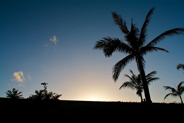 Photos: 沖縄の夕暮れ、シルエットが落日に映える