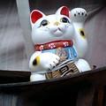 左手挙げの招き猫5@京都