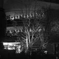 写真: 三菱一号館の中庭の夜