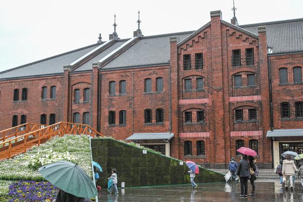 Photos: 横浜赤レンガ倉庫の春の装い