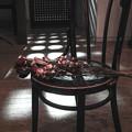 Photos: a dried flower-3