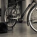 自転車のミニチュア@カメラと一緒に1