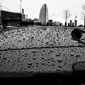 Photos: Rainy Day