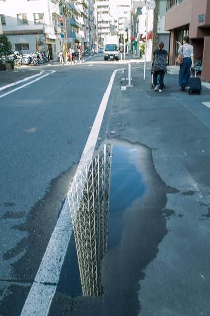 Photos: 地面の裂け目