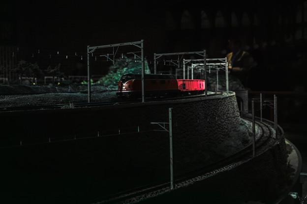 Photos: 夜行列車(貨物だけど(爆))
