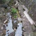 Photos: 水車
