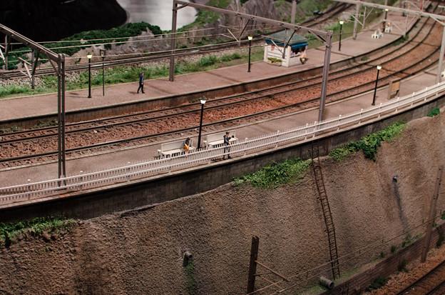 Photos: 列車を待つ間に、、